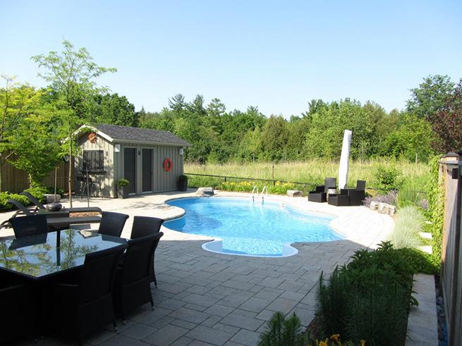 Backyard with a curvy shaped pool.